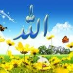 Leer Allah kennen