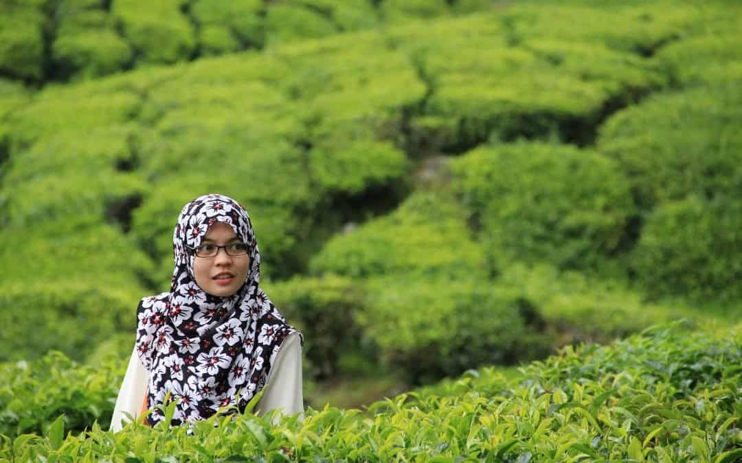 Ik wachtte met bekeren tot de Islam omdat ik nog niet kon bidden, maar dat was onnodig…